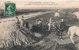 Cpa 17 Le Tesselier Mise En Sac & Chargement Du Sel - Ile D'Oléron