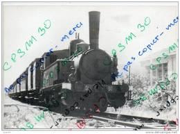 34 Hérault - Petit Train De PALAVAS - Machine N° D 81 (attention Le Chauffeur Vous Guette) Photo Perso - Palavas Les Flots