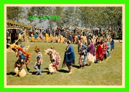 INDIENS - THE OJIBWAY INDIANS - MAJESTIC POST CARD - - Indiens De L'Amerique Du Nord