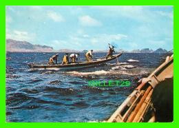 MADEIRA, PORTUGAL - PESCA DA BALEIA - PÊCHE À LA BALEINE - CIRCULÉE EN 1991 - - Madeira