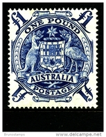 AUSTRALIA - 1949  1 £  ARMS  MINT NH  SG 224c - Mint Stamps
