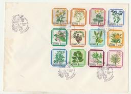 FDC????? * Large Format * Grand Format * Flores Regionais Dos Açores * 1983 - FDC