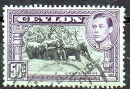 PIA - CEYLON - 1937-49 ; Il Bagno Egli Elefanti   Con L' Effigie Del Re Giorgio VI - (Yv 260) - Ceilán (...-1947)