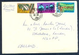 G40- Postal Used Cover. Posted From Nigeria To England. UK. Animals. Hides & Skins. Gas. - Nigeria (1961-...)