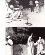 INCANTATORE DI SERPENTI - ANTICHI MESTIERI - LOTTO DI 3 FOTO ANNI 70 - MAROCCO - Mestieri