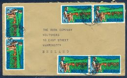 G69- Postal Used Cover. Posted From Nigeria To England. UK. Animals. Cattle Ranching. - Nigeria (1961-...)