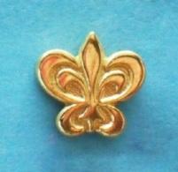 1 PIN'S //   ** RELAIS & CHÂTEAUX ** FLEUR DE LYS ** - Pin's