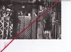 """CP 62 -  LIEVIN  - Le Film """"LE POINT DU JOUR"""" 1948 - Lievin"""