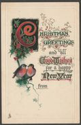 Christmas Greetings And A Happy New Year, C.1910 - Embossed Tuck's Postcard - Other