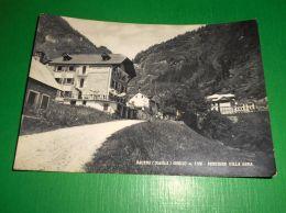 Cartolina Baceno ( Ossola ) - Goglio - Pensione Villa Gina 1953 - Verbania