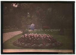 AUTOCHROME 13 X 18 Primitif 1910 CHATOU Femme Jardin Fleuri YVELINES 78 - Foto