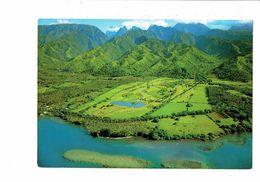 Cpm - Tahiti - Plaine Et Golf D'Atimaono - Erwin Ch 324 - - Polynésie Française