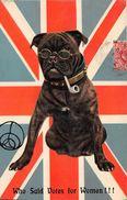 ¤¤  -  Illustrateur  -  Chien Humanisé   -   Pipe , Lunette , Drapeau Anglais  -  ¤¤ - Hunde