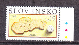 Europa Cept  2005 Slovakia 1v (+margin) ** Mnh (36315E) - 2005