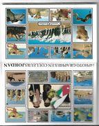 4151v: Postkartenmappe Mit 14 AKs Jordanien, Ungelaufen - Jordania