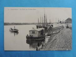 CHANTENAY. - La Loire Au Cordon Bleu. - Other Municipalities