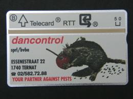 P 257. Dancontrol. Souris - Muis. 2000 Ex. - Belgium