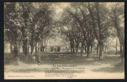 MARTEL - Le Lot Pittoresque - CPA  Promenade De La Callopie - Paypal Sans Frais - Autres Communes