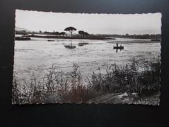 SAINT-AYGULF  Les étangs Salés  Années 50 - Saint-Aygulf