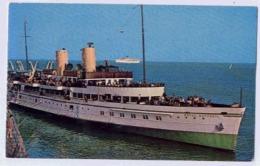 MV ROYAL DAFFODIL' - Steamers