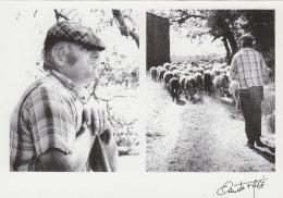 Beauregard Limogne En Quercy 46 - M. Savignac Gardien De Moutons - Edition Fagé Tirage Limité - Unclassified
