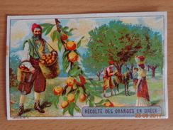 IMAGE  --  LIBRAIRIE  D' ÉDUCATION  NATIONALE  --   Récolte Des Oranges En GRECE - Vieux Papiers
