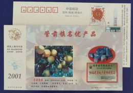 Guanqian Kumquat Fruit,mineral,metalworking Product Silicon,CN01 Youxi Industry Advertising Postal Stationery Card - Minerals