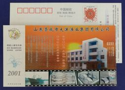 Squid,pomfret,high Quality Fish Meal,fishing Vessel,China 2001 Rongcheng Ocean Fishery Group Advert Pre-stamped Card - Fishes