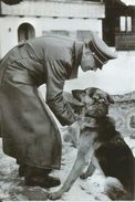 Militaria WW2 - Adolf Hitler Et Blondi - 1939-45