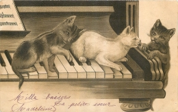 CHATS SUR UN PIANO - Chats