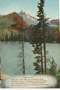 BEAR LAKE CARTE POSTALE ANCIENNE - Etats-Unis