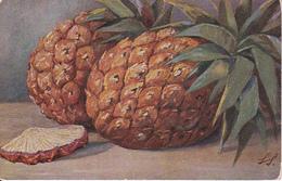 AK Ananas - Künstlerkarte - Marine-Feldpost Hamburg - 1918 (29400) - Botanik