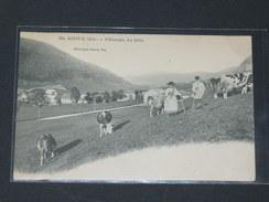 MIJOUX / ARDT GEX    1910  /  METIER PAYSAN / PATURAGE SUR LA DOLE   / CIRC NON EDIT - France