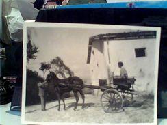 CALESSE E RAGAZZA CAVALLO HORS 1953  GC14510 - Anonymous Persons