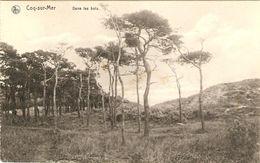 Coq-sur-Mer   ---  Dans Les Bois - De Haan