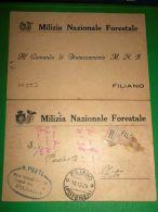 Cartolina Doppia Milizia Nazionale Forestale - Filiano ( Potenza ) 1929 - Potenza