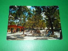 Cartolina Gravina ( Bari ) - Pineta Comunale 1973 - Bari