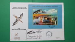 TAAF, Année  2006   Enveloppe 1 Er  Jour  N° BF16 - FDC