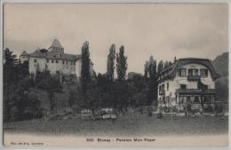 Bolnay - Pension Mon Foyer - Photo: Des Arts No. 3632 - VD Vaud