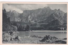 Fusine In Valromana - Il Lago Superiore - Tarvisio * 11. 7. 1932 - Udine