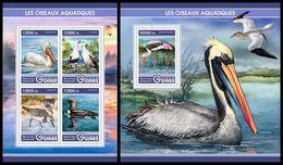 GUINEA 2017 - Water Birds, Pelicans. M/S + S/S. Official Issue - Pelikanen