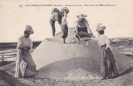 LES SABLES D'OLONNE UN MULON DE SEL VISITE AUX MARAIS SALANTS (LF1) - Sables D'Olonne