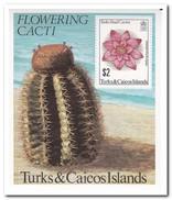 Turks & Caicos 1981, Postfris MNH, Cacti - Turks- En Caicoseilanden