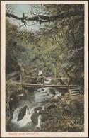 Awns And Dendles, Near Cornwood, Devon, C.1905 - Peacock Postcard - England