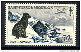 S. Pierre Et Miquelon Posta Aerea 1957 N. 24 Fr 50  Cane Osserva Aereo MVLH Catalogo € 57 - Posta Aerea