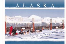Pipeline, Copper Basin Dog Sled Race, ALASKA, AK, United States, USA, POSTCARD POST CARD, Carte Postale - United States