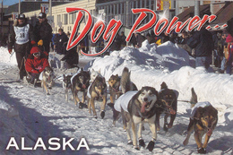 Dog Sled Race, ALASKA, AK, United States, USA, POSTCARD POST CARD, Carte Postale - United States