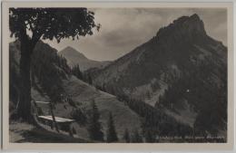 Schimberg-Bad - Blick Gegen Feuerstein - Photo: E. Goetz No. 3829 - LU Lucerne