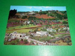 Cartolina Locorotondo - Contrada Serra 1965 Ca - Bari