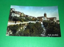 Cartolina Paliano ( Frosinone ) - Viale Garibaldi 1955 - Frosinone